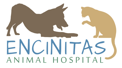 Encinitas Animal Hospital